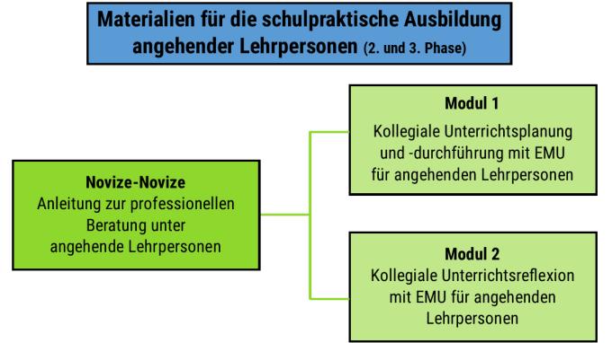 Grafik Ablauf Fortbildungsprogramm